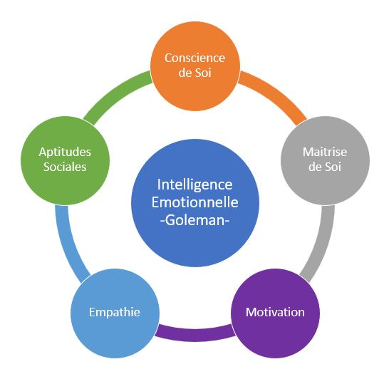Intelligence émotionnelle goleman